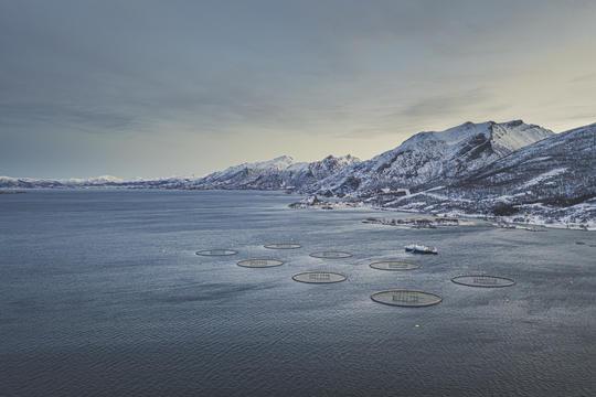 Eidsfjord Sjøfarm